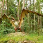 Интересные факты о летающих ящерах.