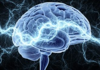 Возможности нашего мозга