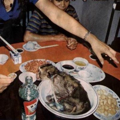 Самые необычные блюда Китая
