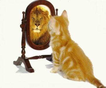 Методы повышения самооценки.