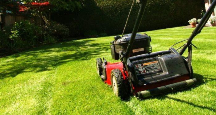 Механизмы для стрижки газона