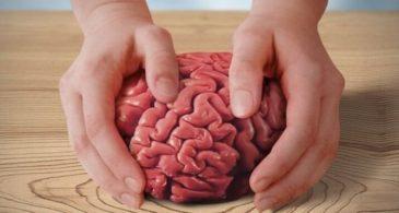 Стимуляторы мозга