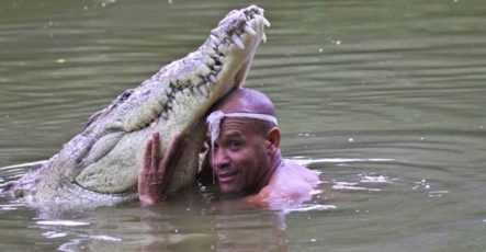 Дружба крокодила и человека