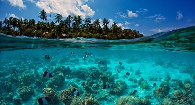 Интересные факт про Мальдивы