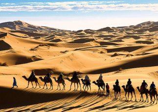 Пустыня Сахара интересные факты