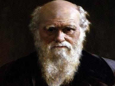 Интересные факты о Дарвине