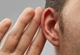 Интересные факты о слухе человека