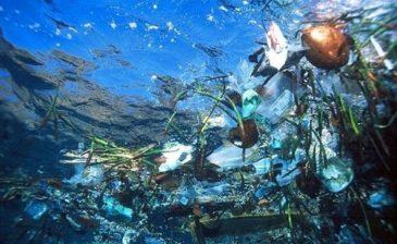 Интересные факты Тихий океан
