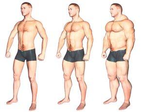 Тест на определение типа телосложения